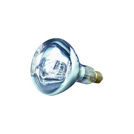 Ampoule infrarouge 250W - Blanc